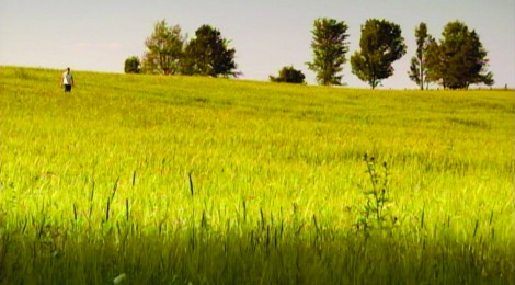 CDG landscape
